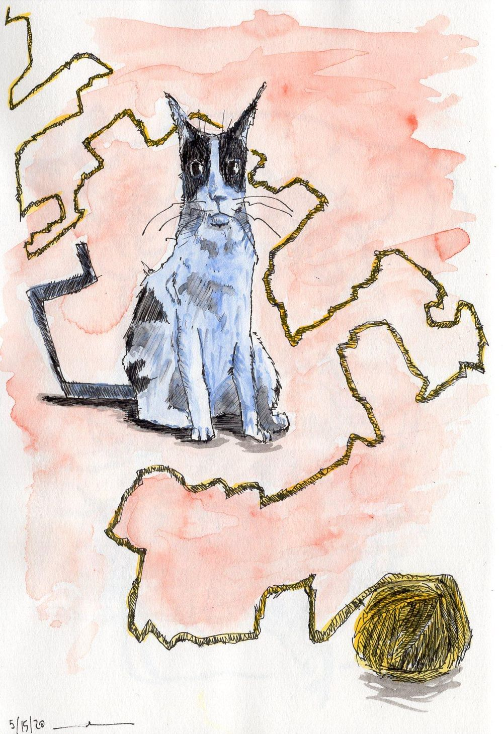 Fun with cats, ink & watercolor - image 3 - student project