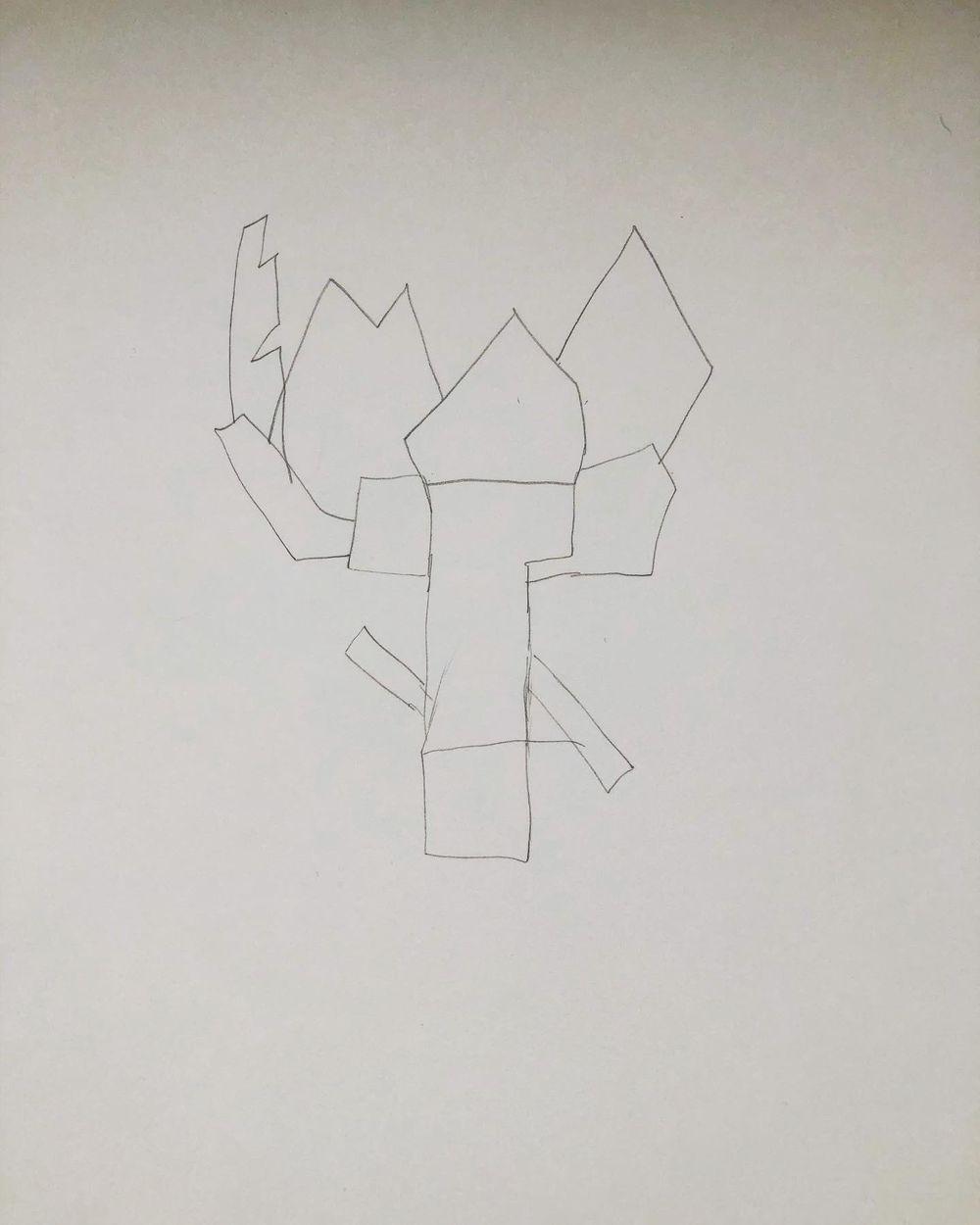Exploration - artichoke drawings - image 7 - student project