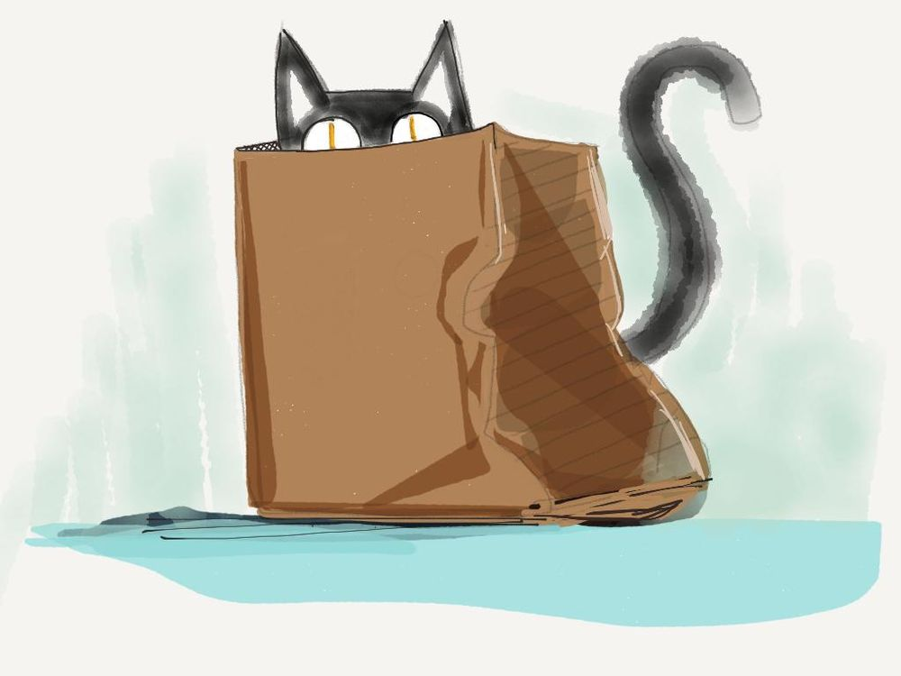 Let the cat out the bag - image 2 - student project