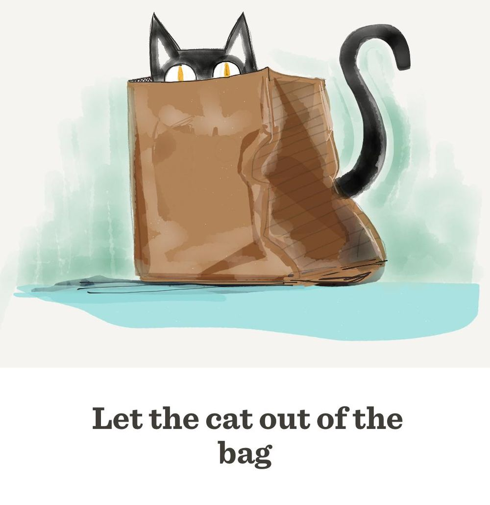 Let the cat out the bag - image 3 - student project