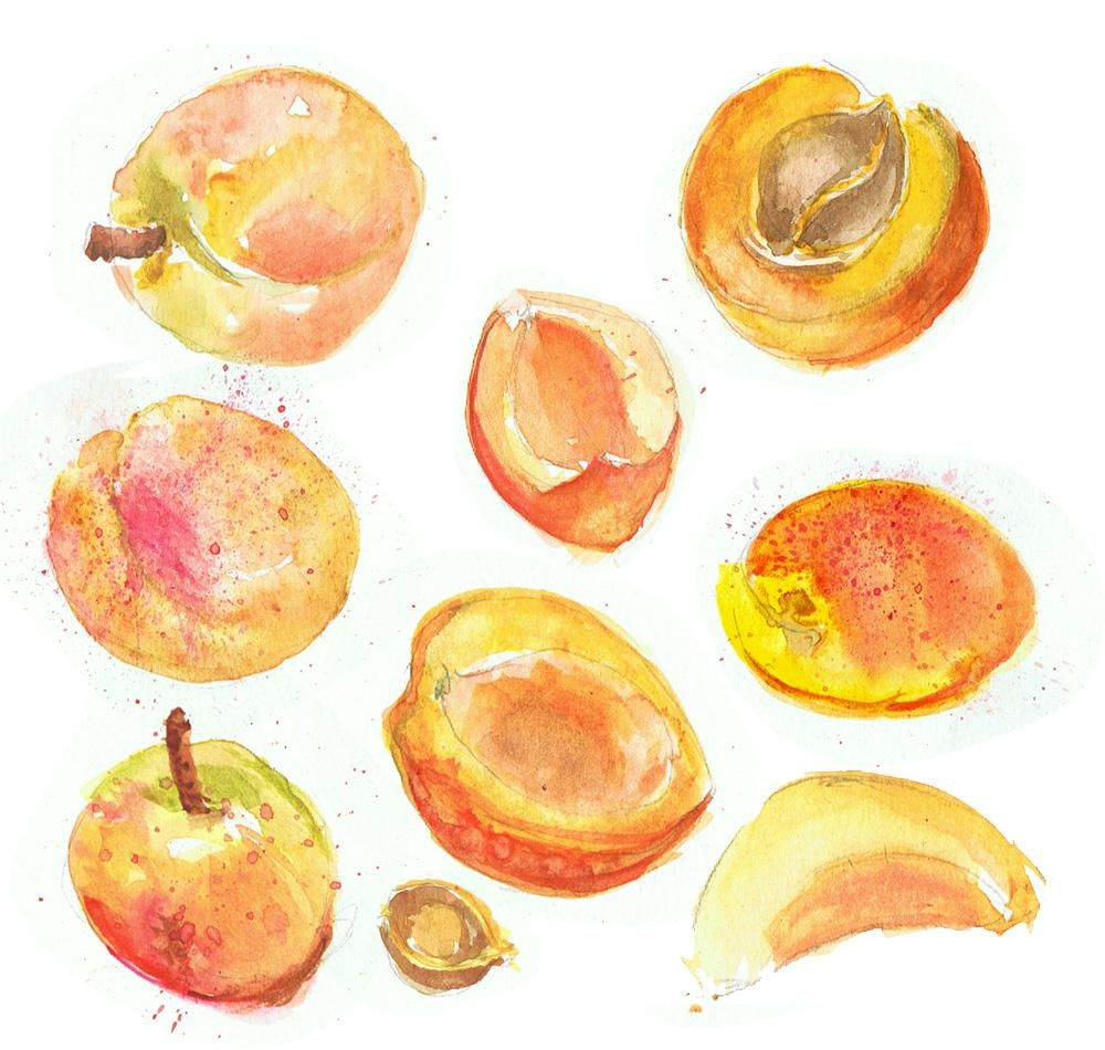 Watercolour story: Explore with colour - image 1 - student project