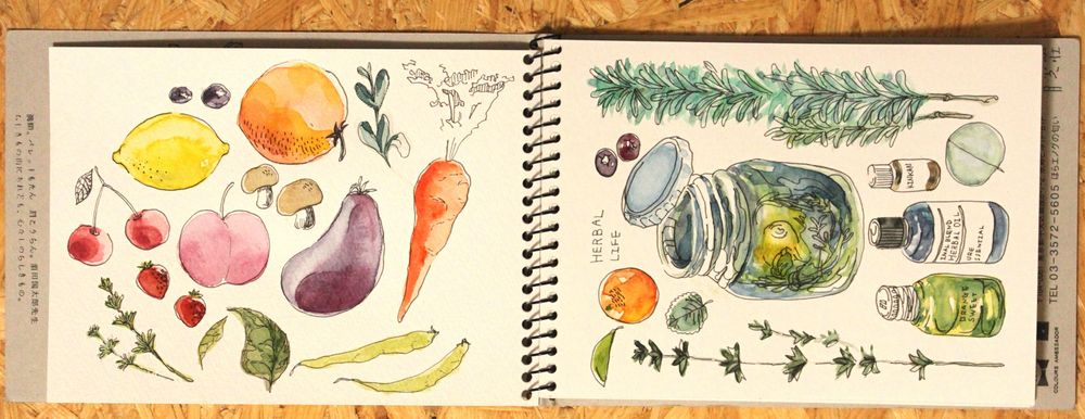 Sketch Book Practice: Fruit and herb - image 1 - student project