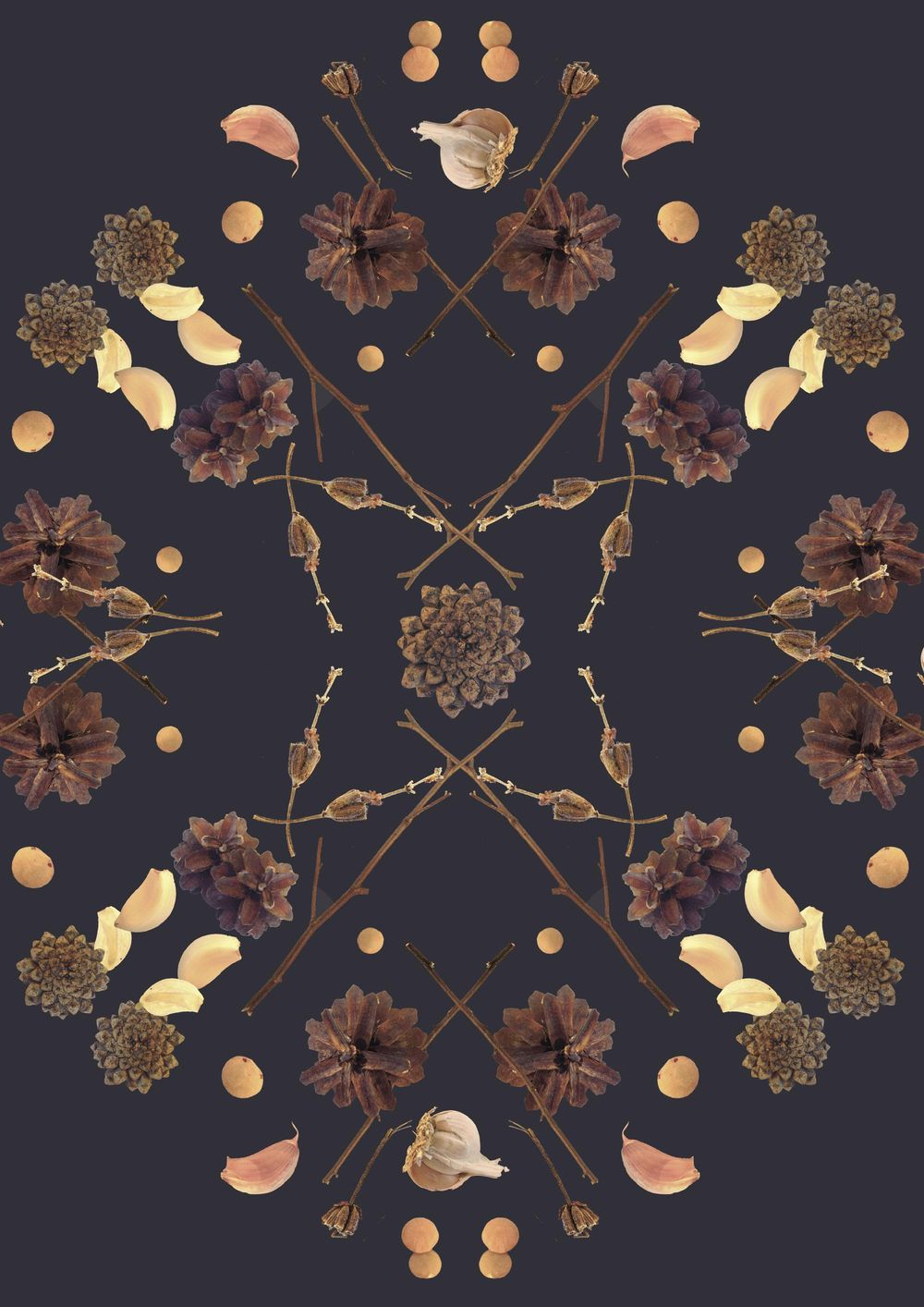 branches, garlic, cones and lentil - image 6 - student project