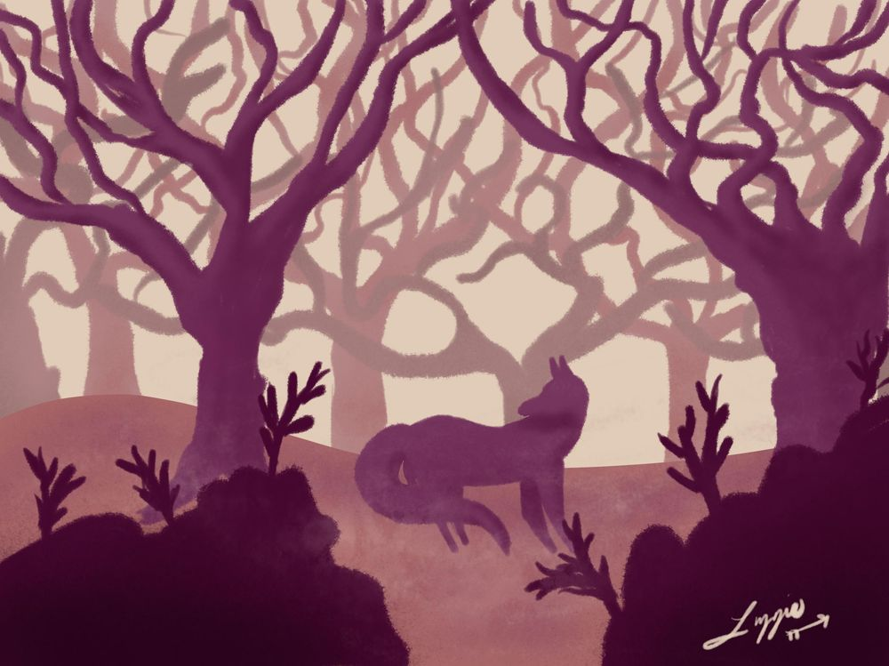 Foxy Forest - image 1 - student project