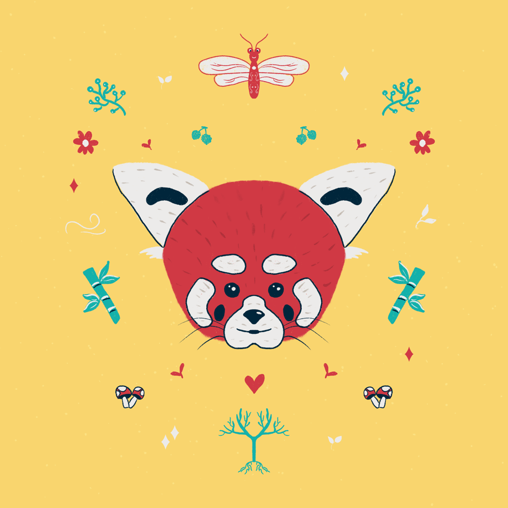 Fun symmetry starfish, red panda and crab - image 2 - student project