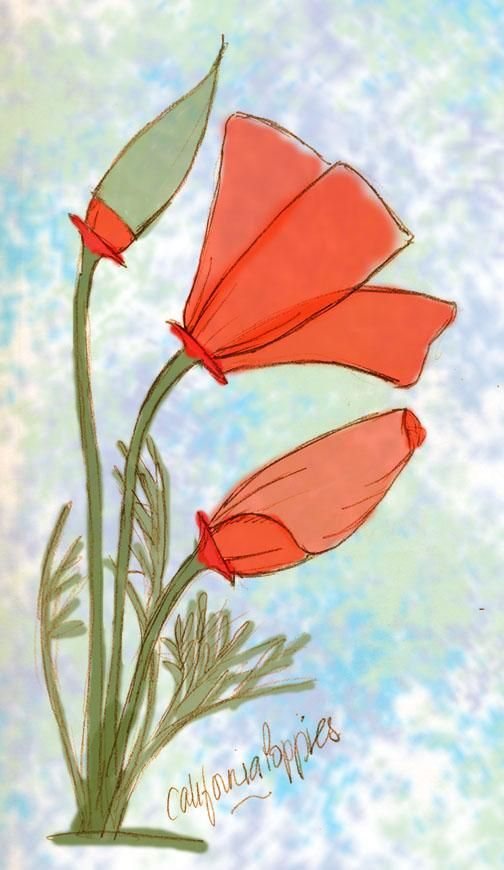 Copy of a Poppy - image 1 - student project