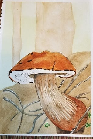 Evelyn's Botanical Watercolors - image 1 - student project