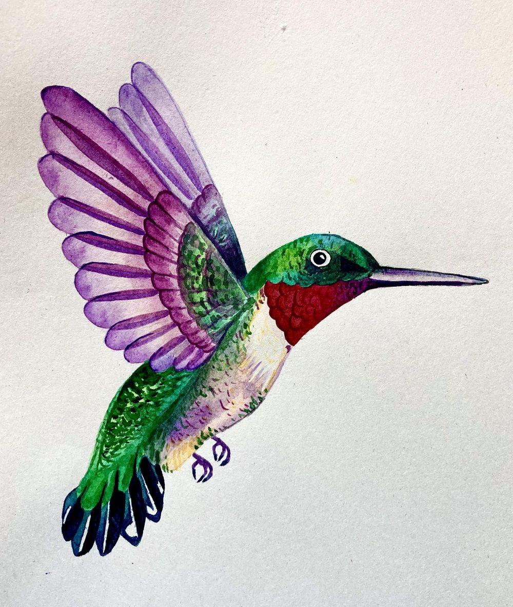 Hummingbird! - image 1 - student project