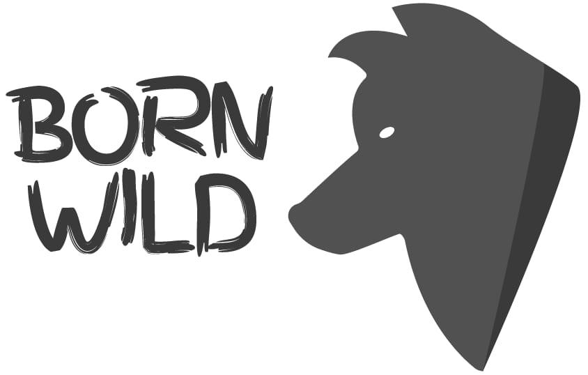 BORN WILD Wolf Logo - image 1 - student project