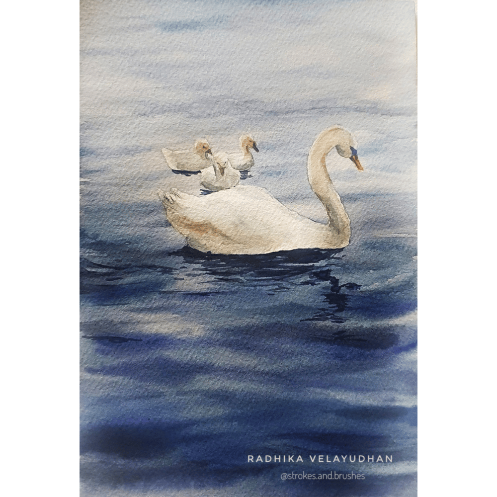 Swan lake - image 2 - student project