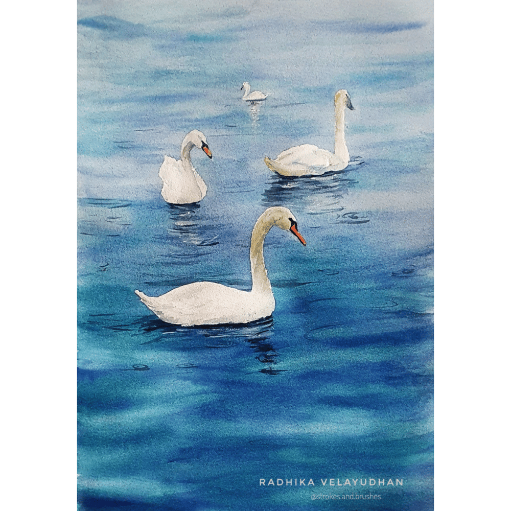 Swan lake - image 3 - student project
