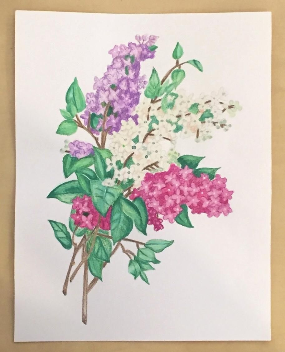 Vintage Inspired Botanical Illustration - image 1 - student project