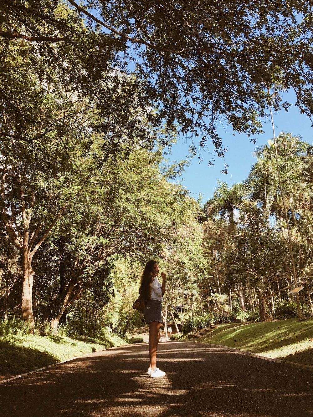 National Botanical Garden - image 2 - student project
