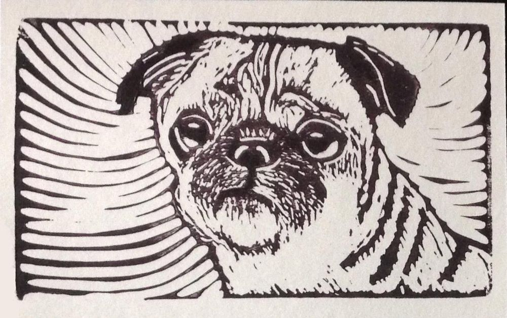 Pack of Pug Postcards - image 5 - student project
