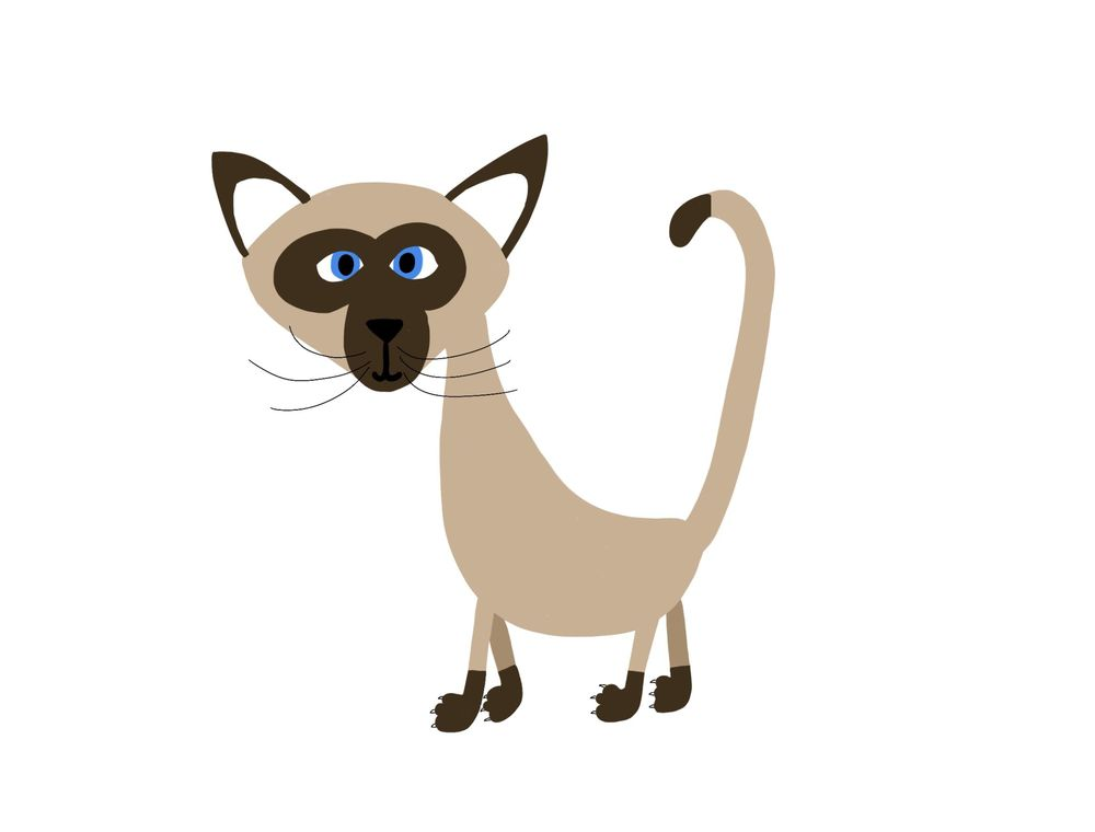 Siamese - image 2 - student project
