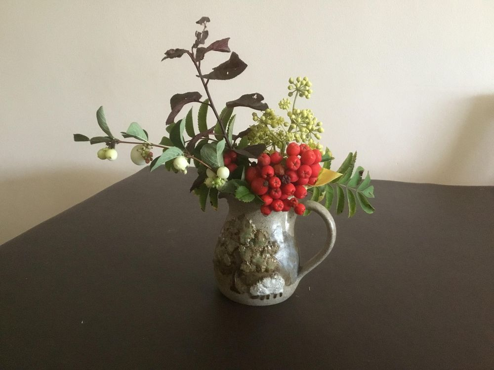 Autumn berries - image 2 - student project