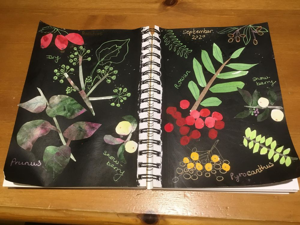 Autumn berries - image 1 - student project