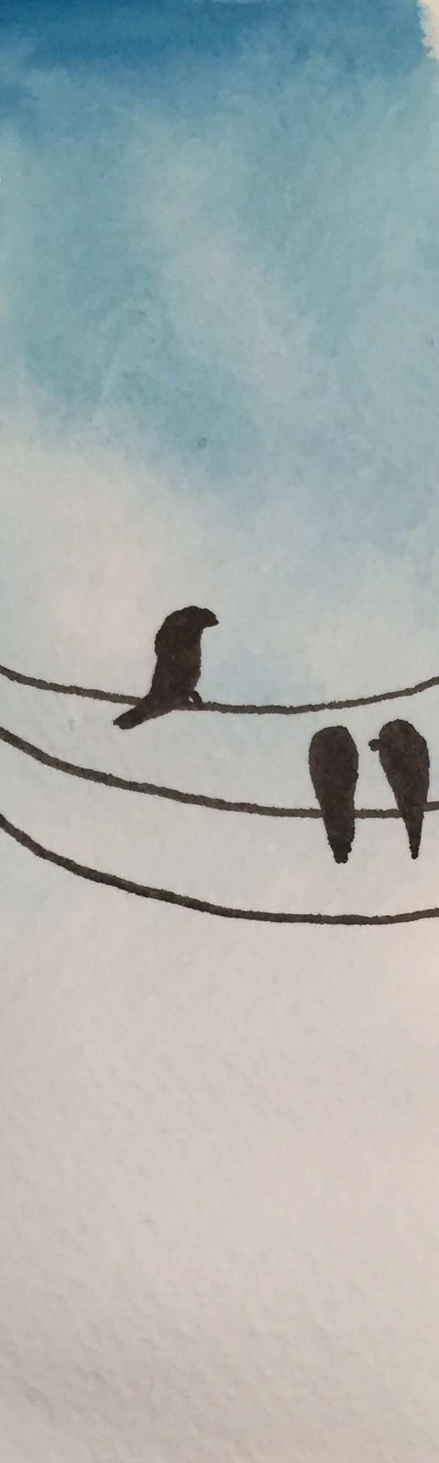 Birds on wire - image 1 - student project