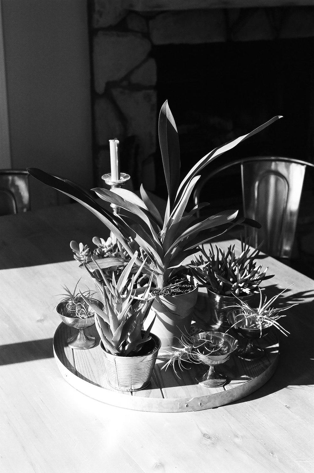 Northern CA in B&W - image 2 - student project