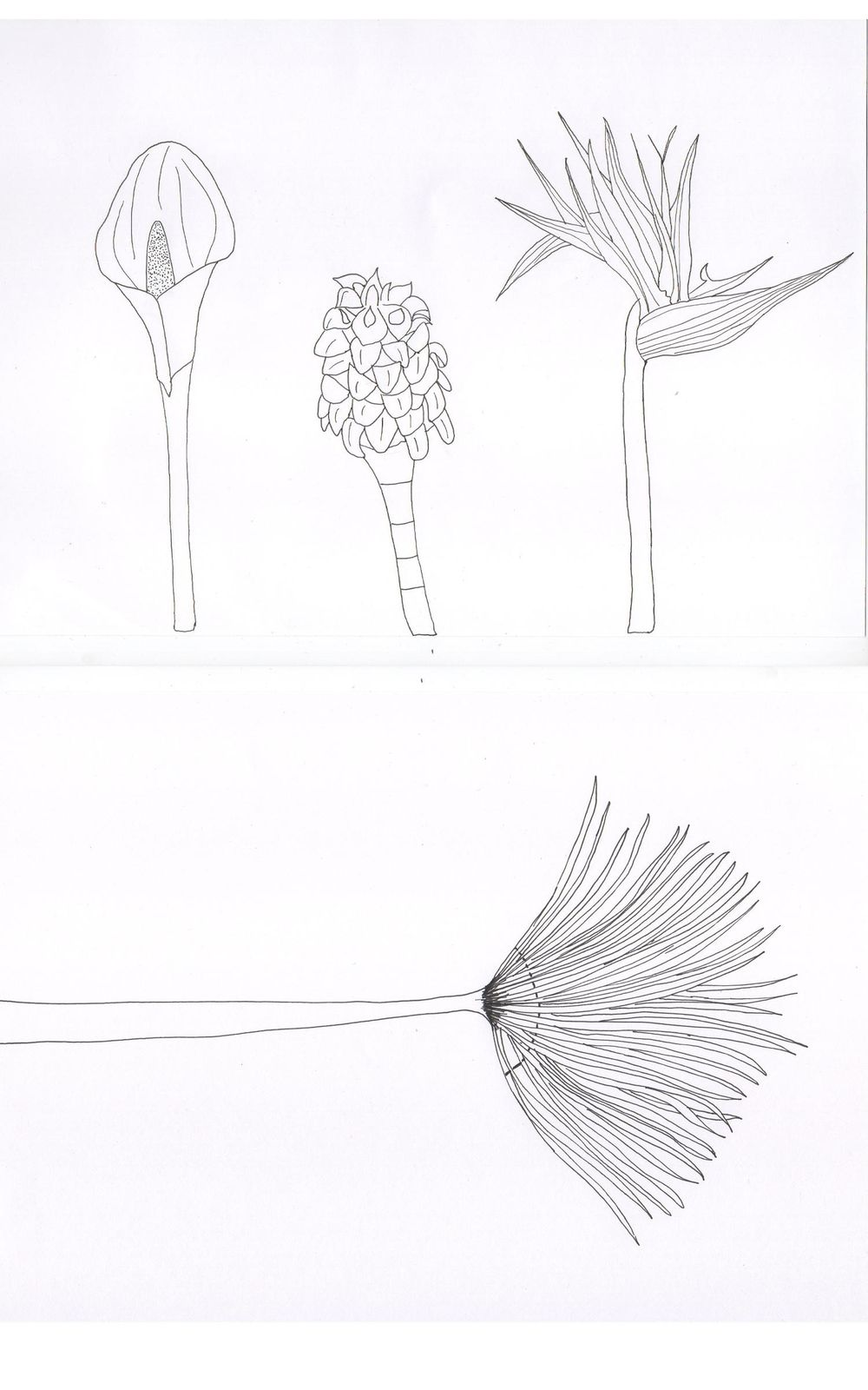 Workshop project: Desperately looking for my style! - image 11 - student project