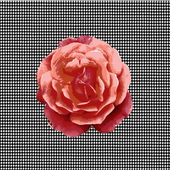 Houndstooth & Rose - image 1 - student project