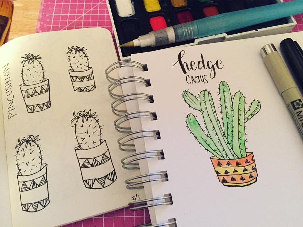 Cacti & Succulents  - image 1 - student project