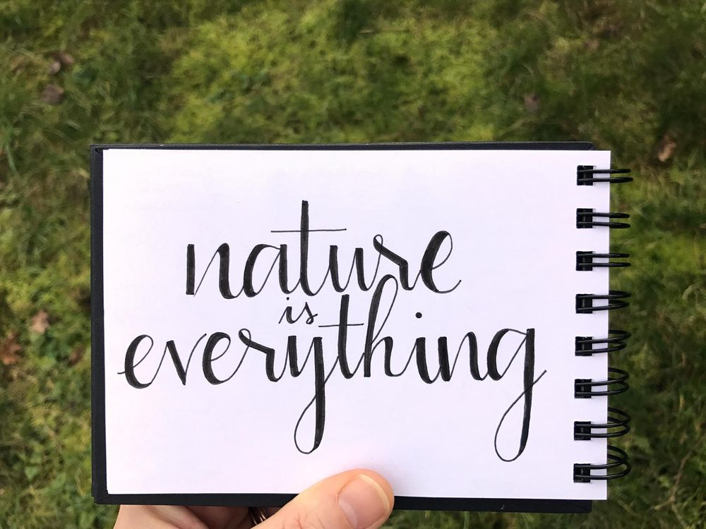 Nature is everything - image 1 - student project
