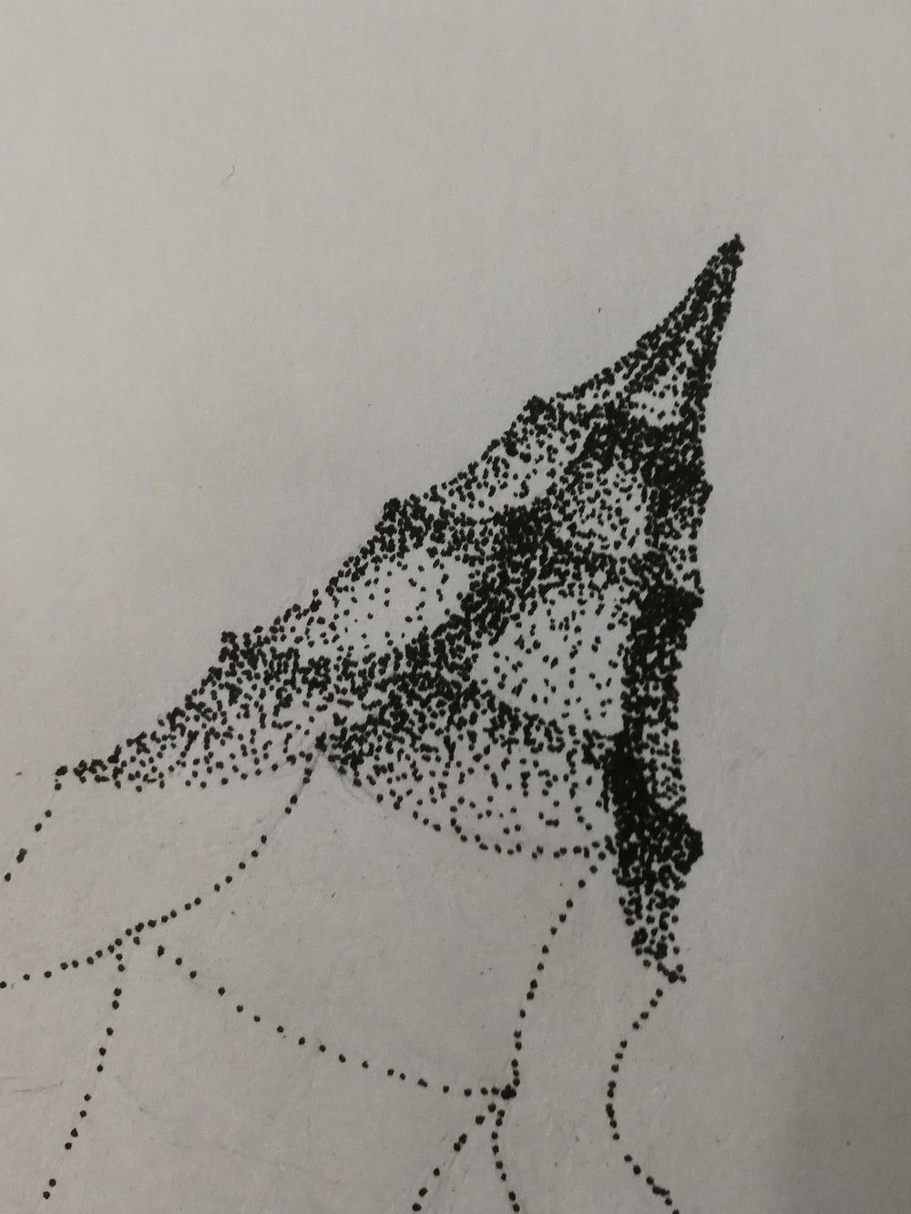 Seashell - image 1 - student project