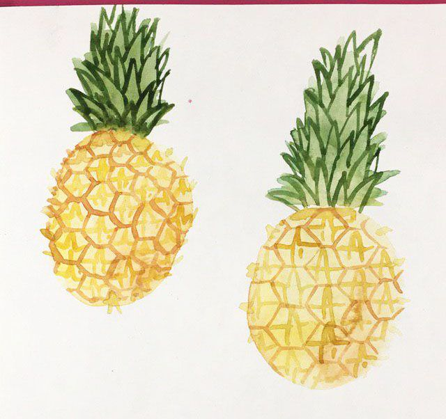 Pineapple - image 2 - student project