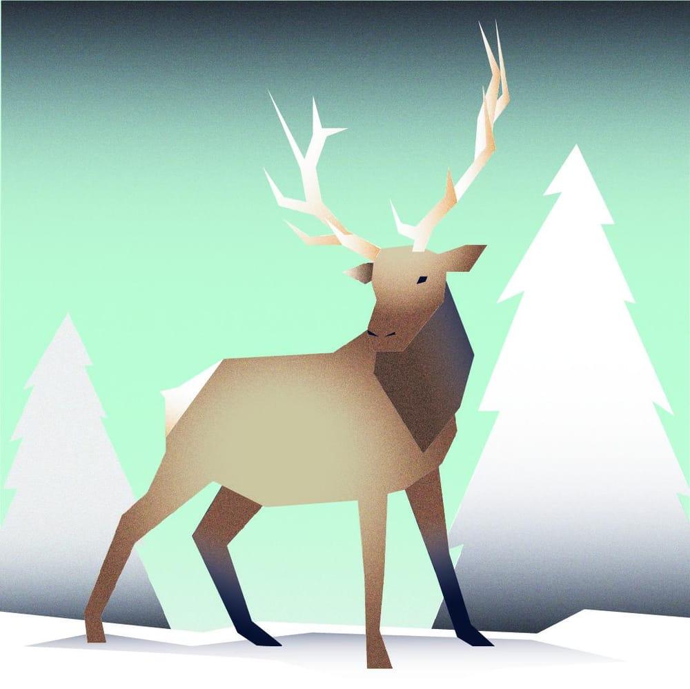 Elk - image 2 - student project