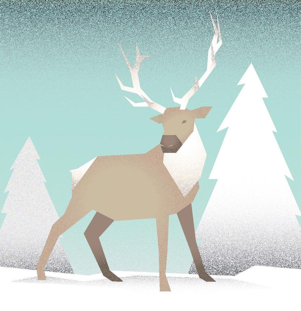 Elk - image 3 - student project