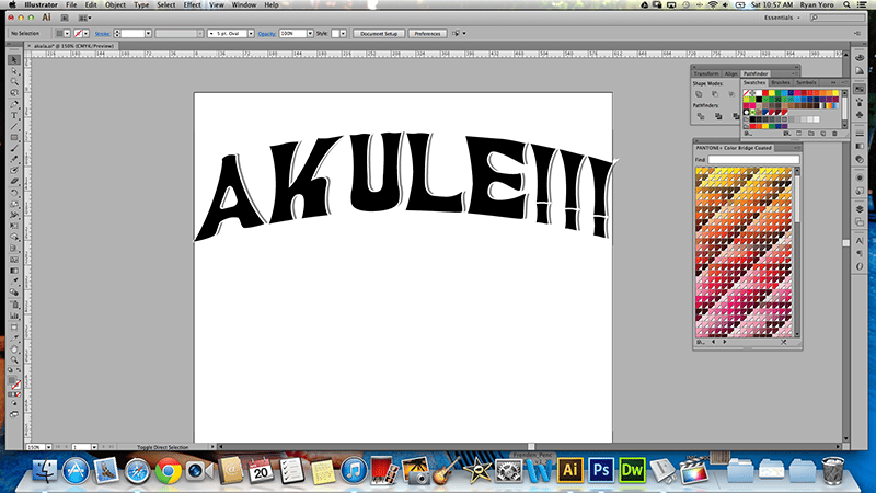 """Update 4.22.13 Simpo...Hawaiian pidgin slang for """"Simple"""" - image 2 - student project"""
