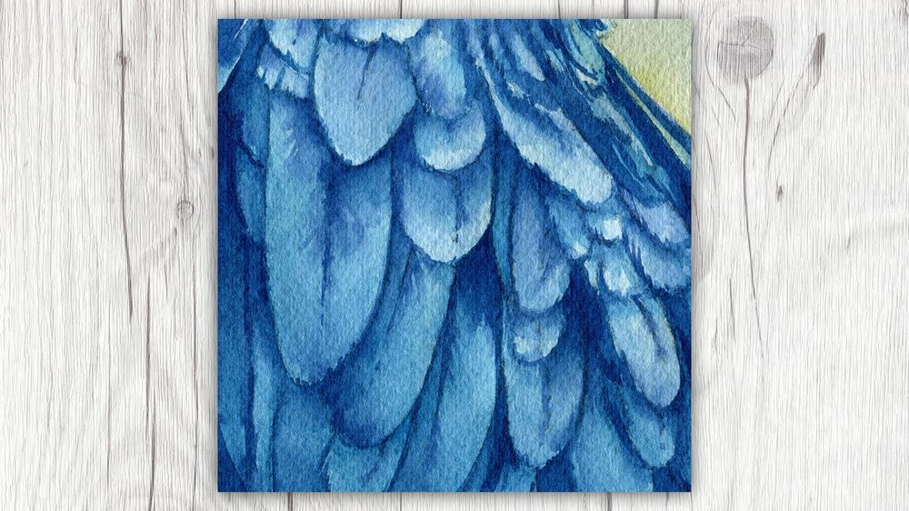 Fur, Feathers, and Scales - Oh my! - image 6 - student project