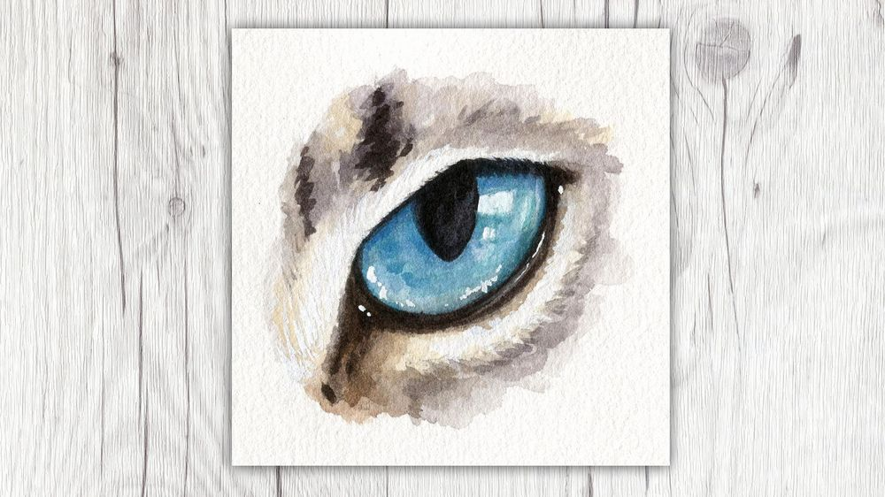 My Animal Eyes - image 2 - student project