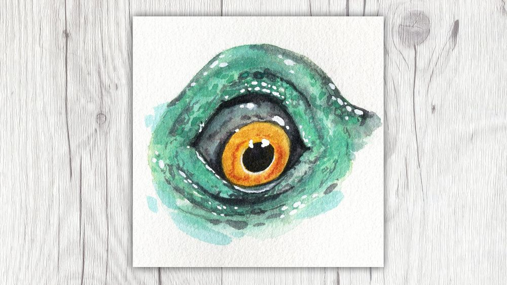 My Animal Eyes - image 4 - student project