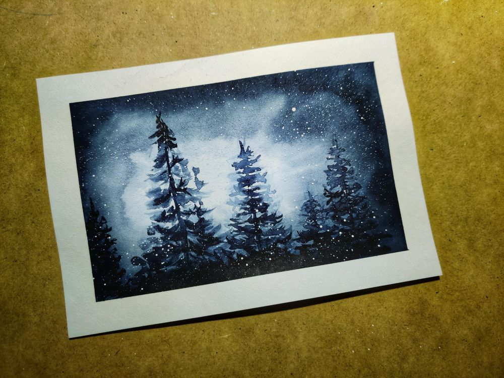 BACKLIT SNOWY PINE TREES - image 1 - student project