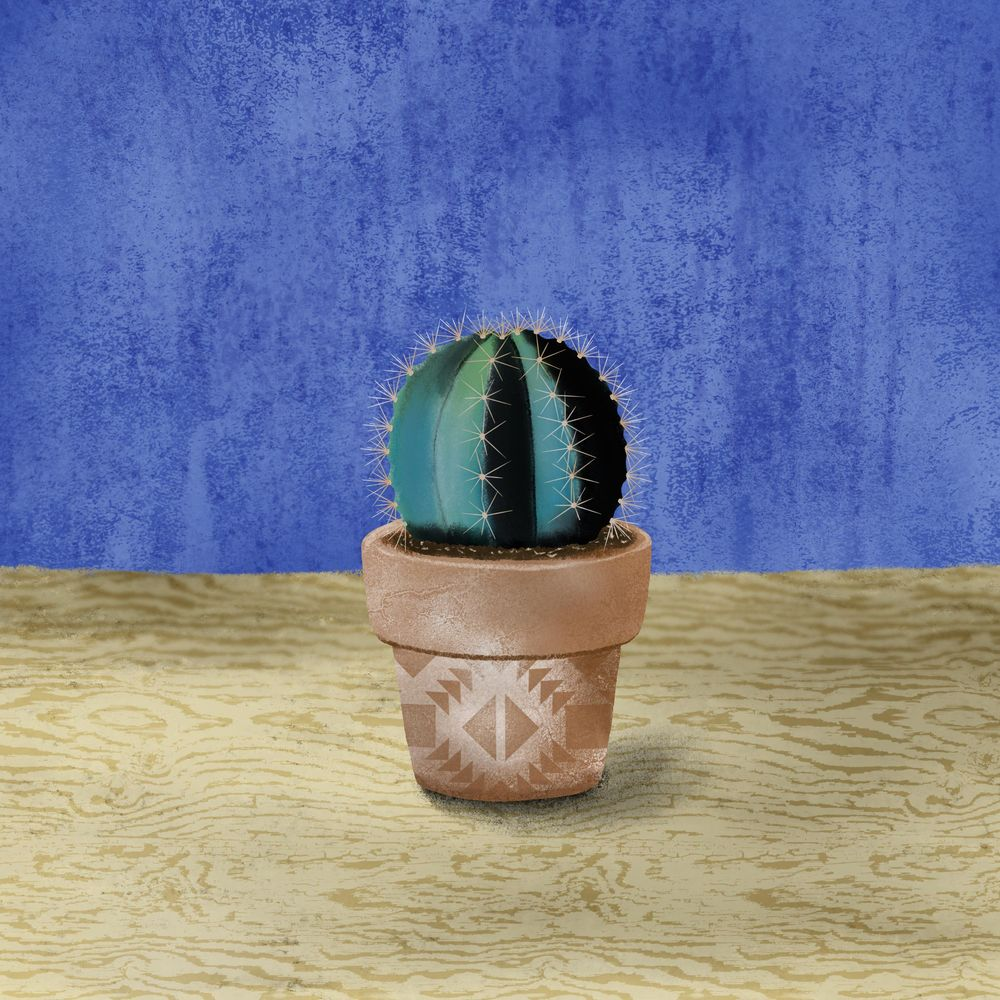 Cactus Love - image 1 - student project