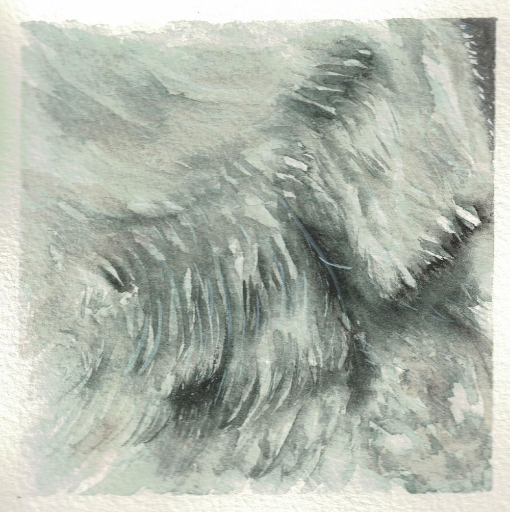 Animal textures - image 3 - student project