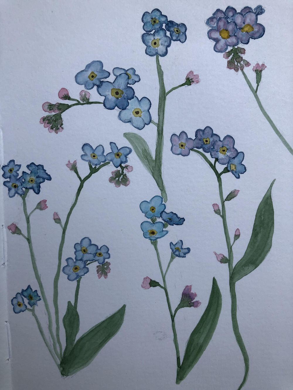 Forgetmenot - image 2 - student project