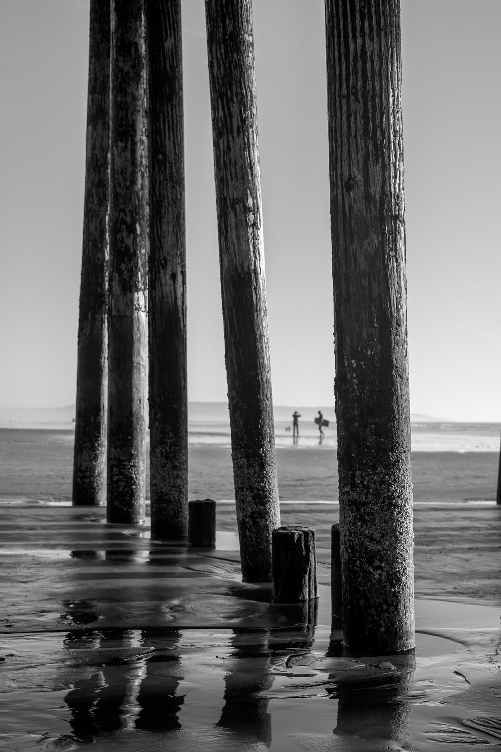 Pier review  - image 3 - student project