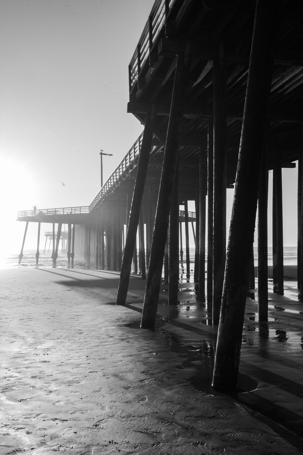Pier review  - image 1 - student project