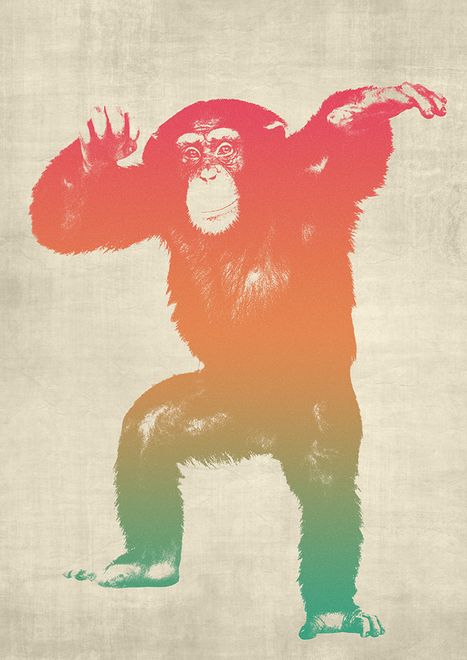 Funky Monkey - image 3 - student project