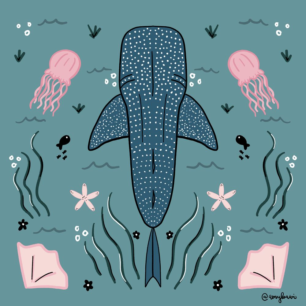 Whale Shark and Turtle - image 1 - student project