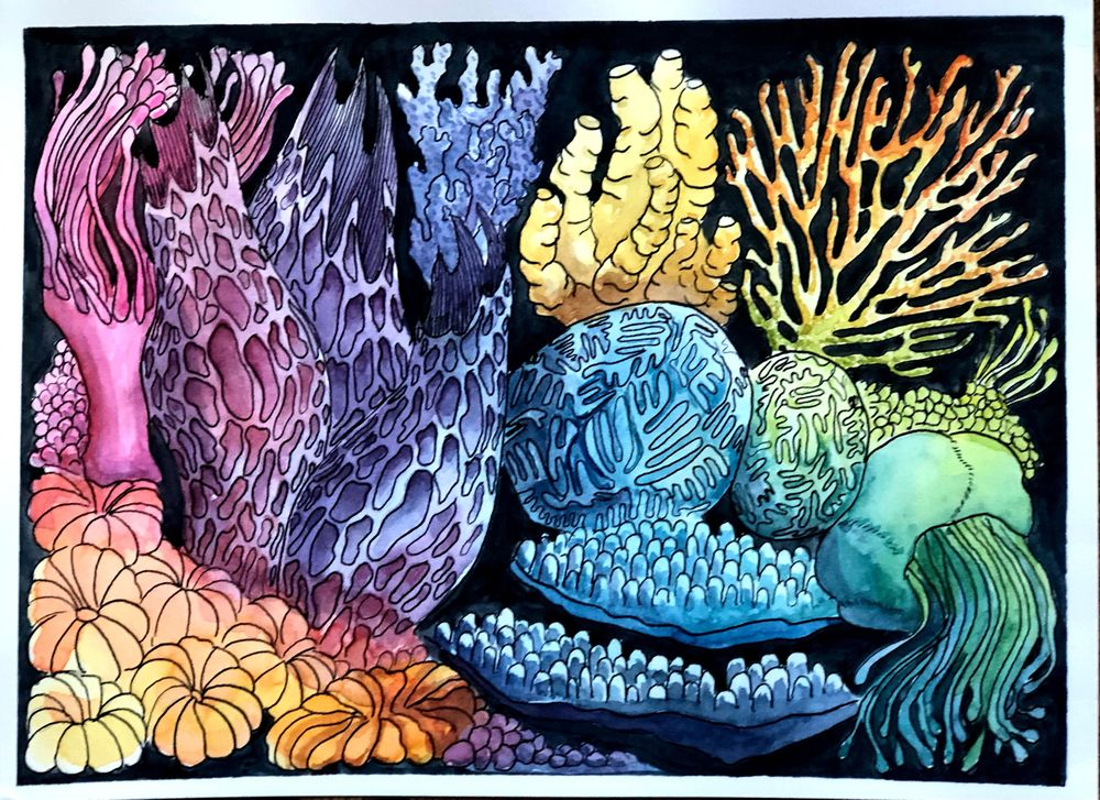 Undersea Rainbow - image 3 - student project