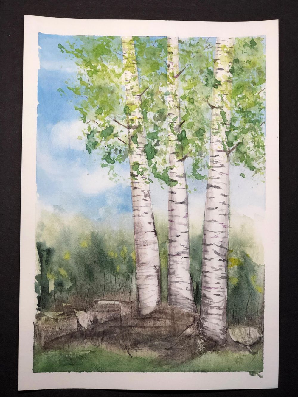 Deciduous Trees - image 3 - student project