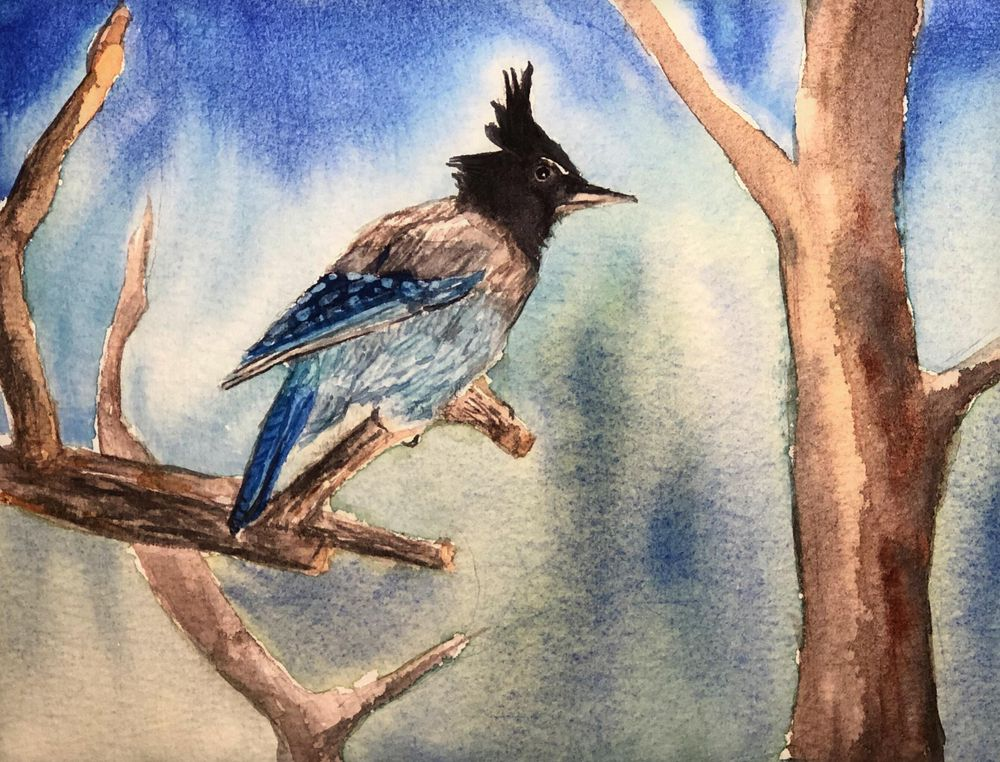 Watercolor Mountain Chickadee - image 2 - student project