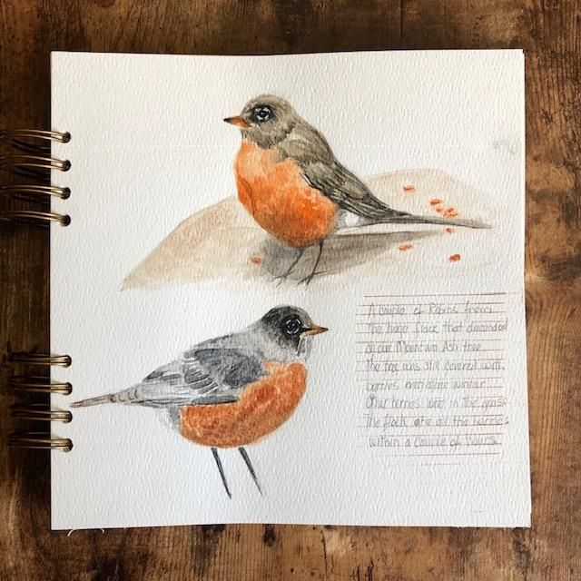 A Flock of Robins - image 2 - student project