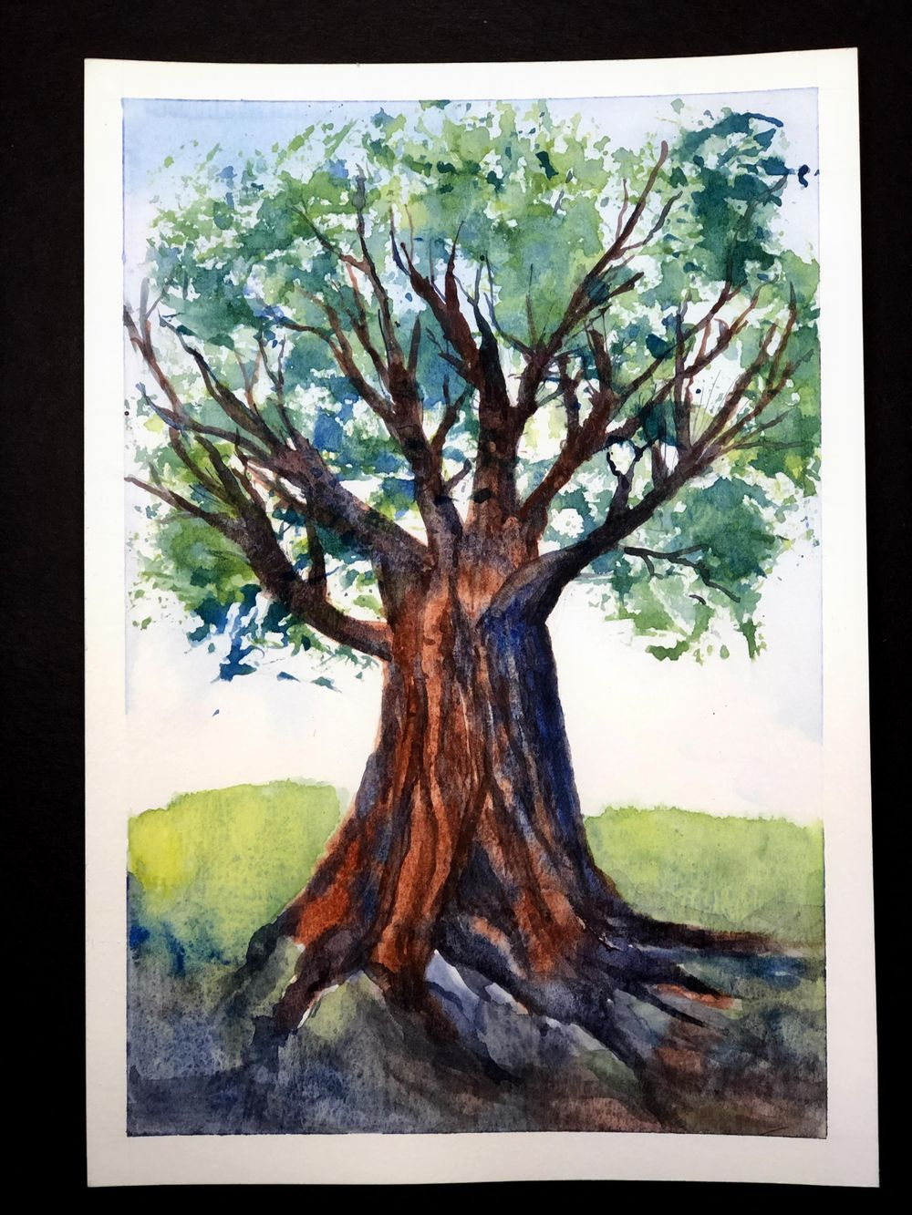 Deciduous Trees - image 1 - student project