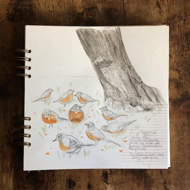 A Flock of Robins - image 1 - student project