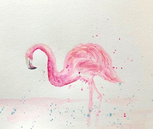 My Fun and Fabulous Flamingo - image 1 - student project